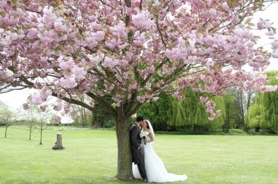 Wedding 1st May 2015 - Billesley Mannor